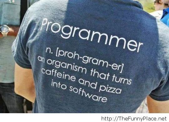 Programmer meaning