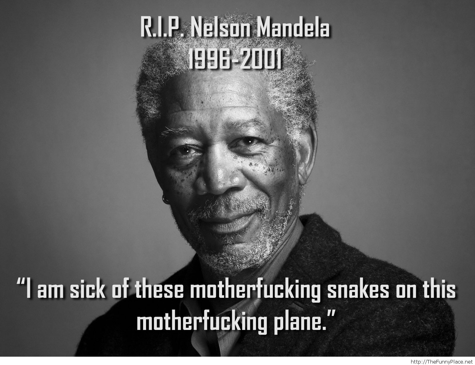 Quotes Nelson Mandela Rip Nelson Mandela Quote  Thefunnyplace
