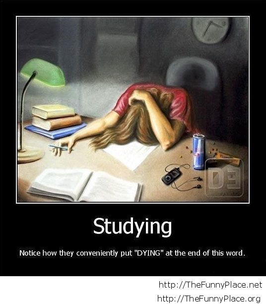 Studying these days...