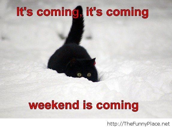 Weekend is coming finally