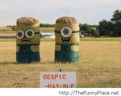 Despic-hay-ble me