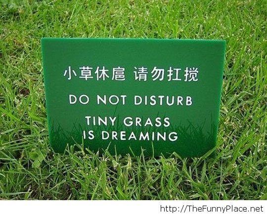 Don't wake it, please...