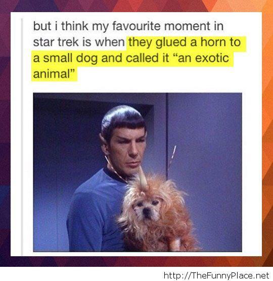 Exoctic animal