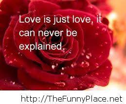 Love 2014 quote