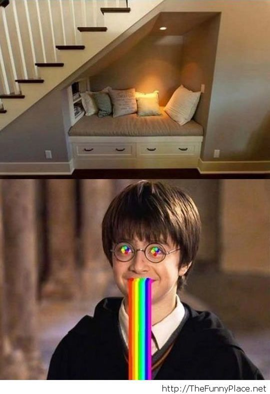 Potter's dreams come true