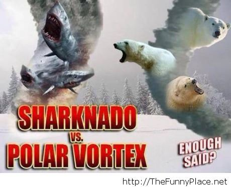 Sharknado, please...
