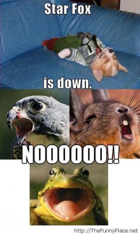 Star Fox is down...