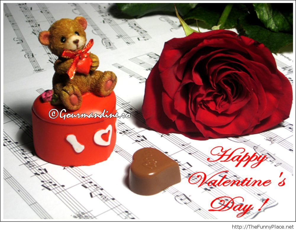 Cute teddy bear and chocolate For Valentine's Day
