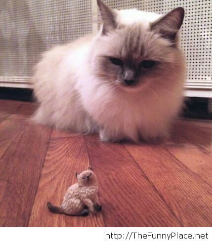 One of his minions...