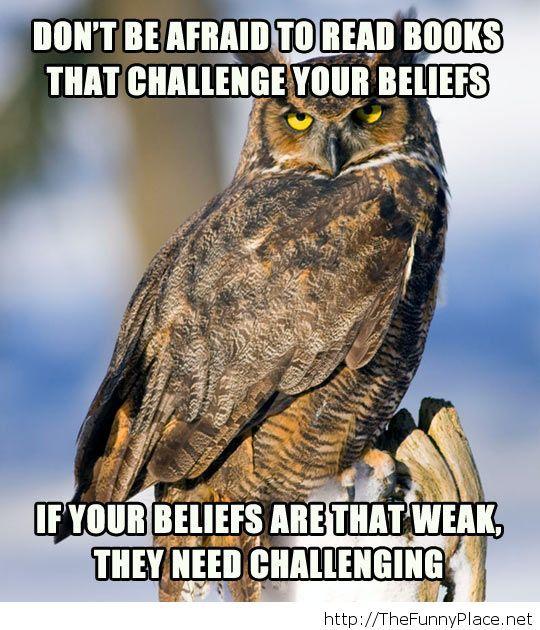 Test your beliefs...