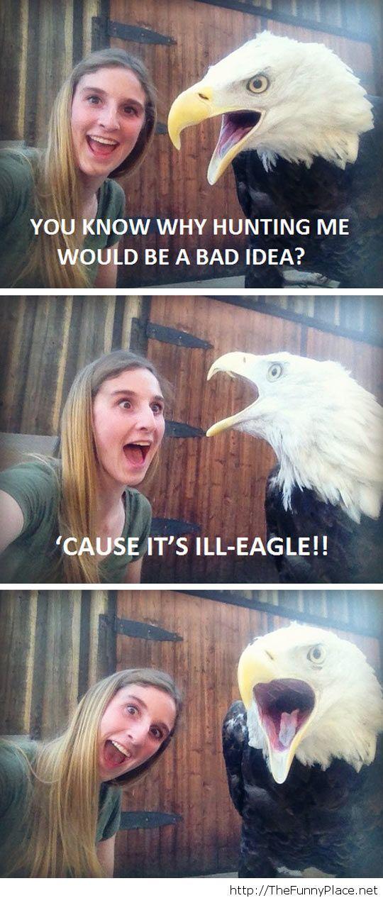 Funny eagle pun