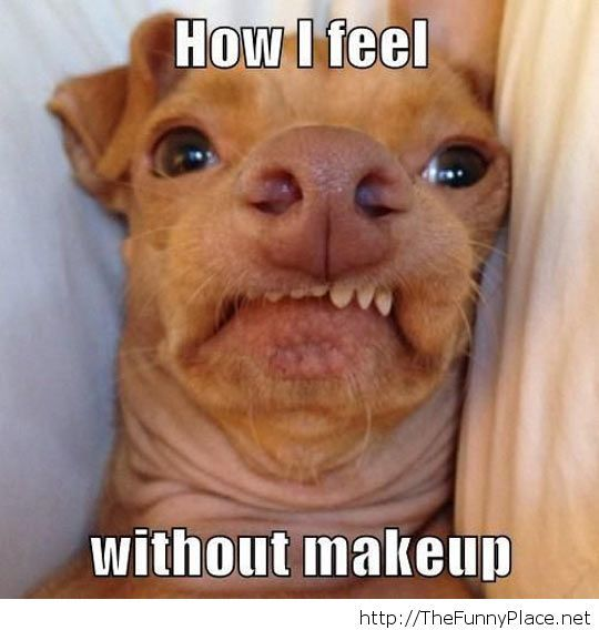How some girls feel in the mornings...