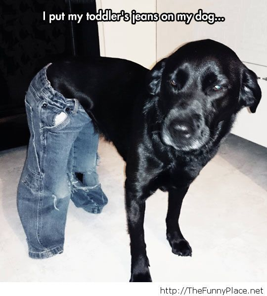 Nice jeans there, bro'!