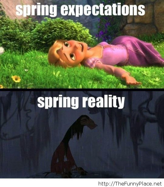 Spring expectations...