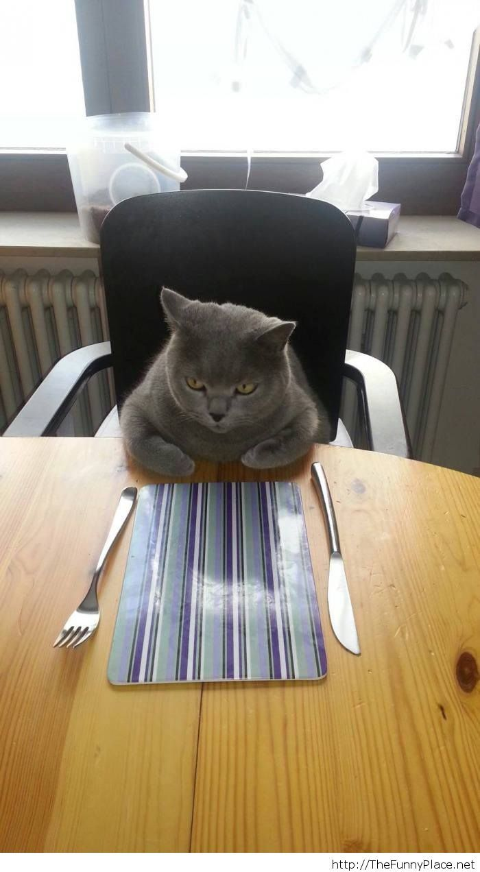 When the food isn't ready yet