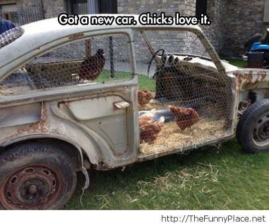 Chick magnet car