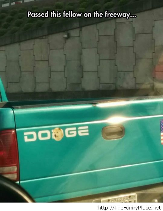 Funny Doge sticker