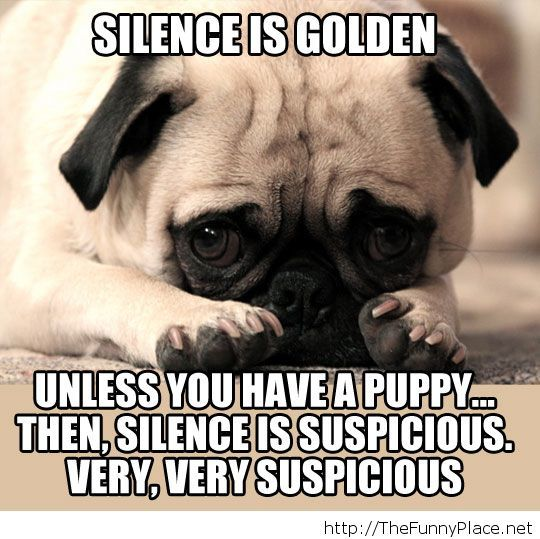 Truth about silence