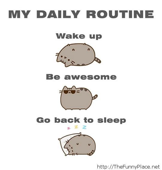 Just my daily routine