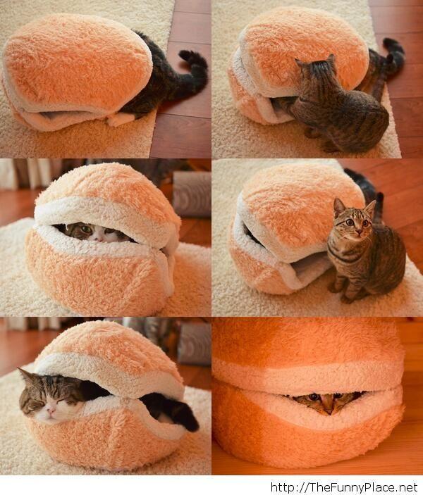 Kitty Hamburger Pillow