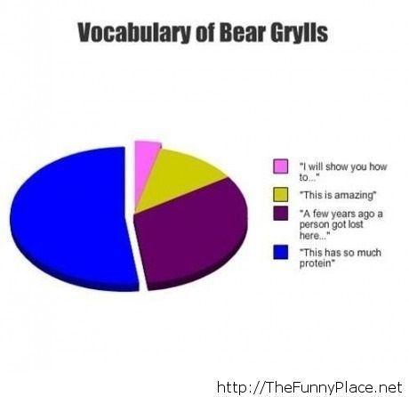 Vocabulary of Bear Grylls