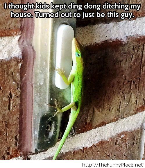 Who is at my door