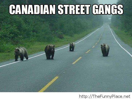 A dangerous gang