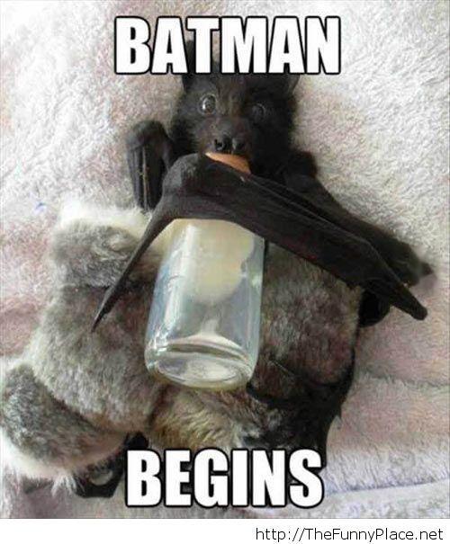 Batman begins picture
