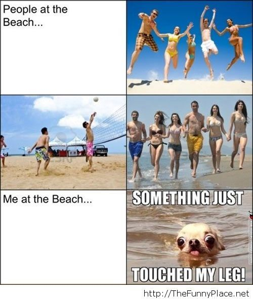 Me, at the beach...