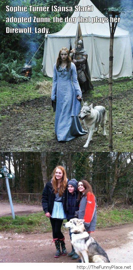Sansa Stark and her direwolf…
