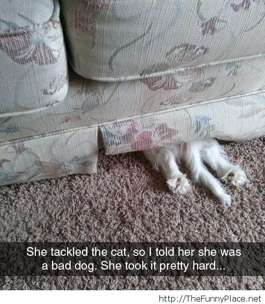 She Took It Hard