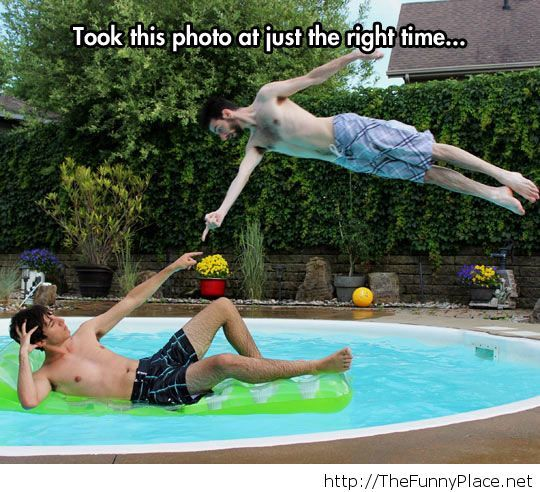 Summer funny picture at the pool