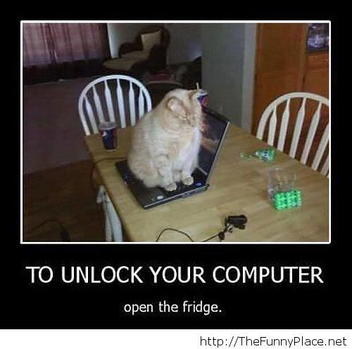 Unlock your computer
