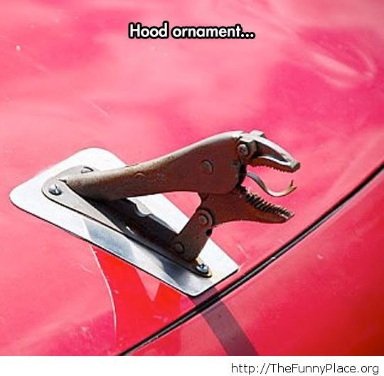 Funny hood ornament