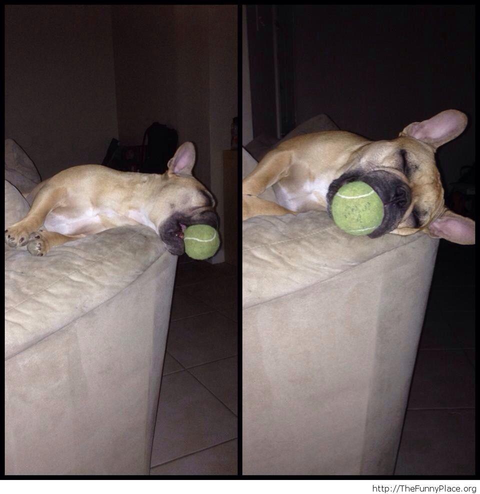 He fell asleep like this