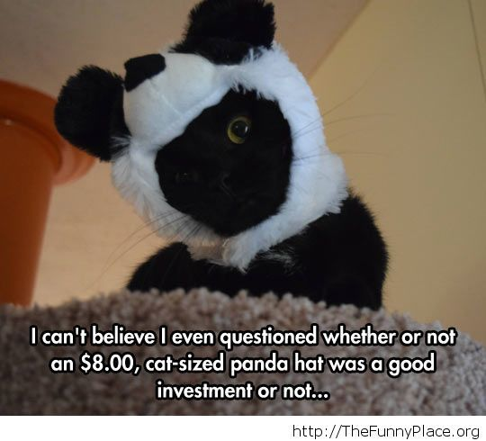 He has become a panda now