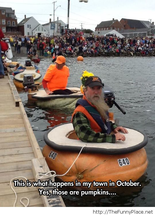Some strange boats