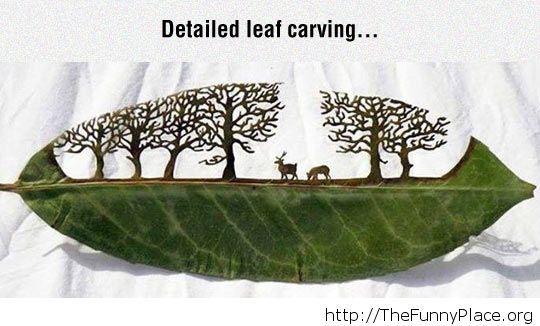 Art of leaf