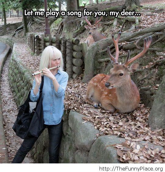 My deer...