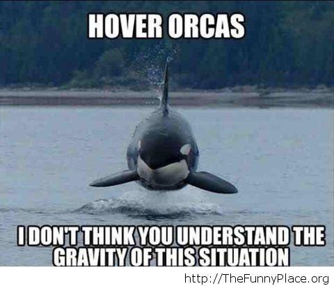 Funny gravity joke