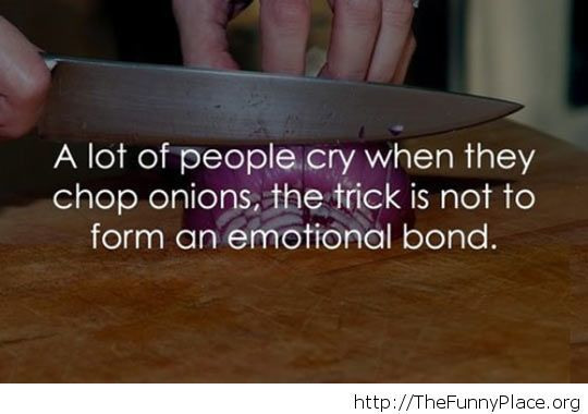 It's just an onion