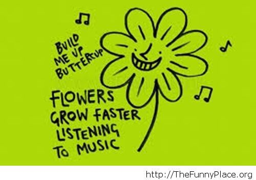 A proven fact about flowers