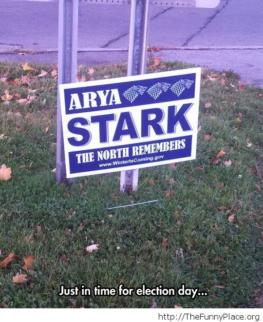 All of us should vote for her