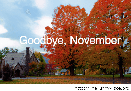 Goodbye November autumn beautiful image