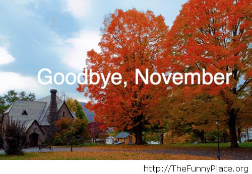 Goodbye November autumn beautiful image