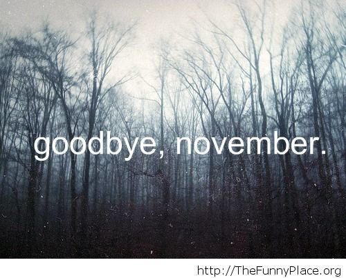 Goodbye November forest photo