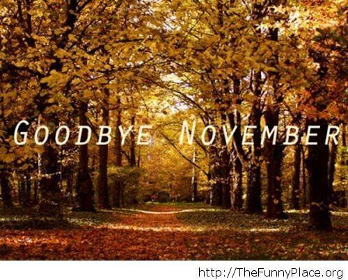 Goodbye November image