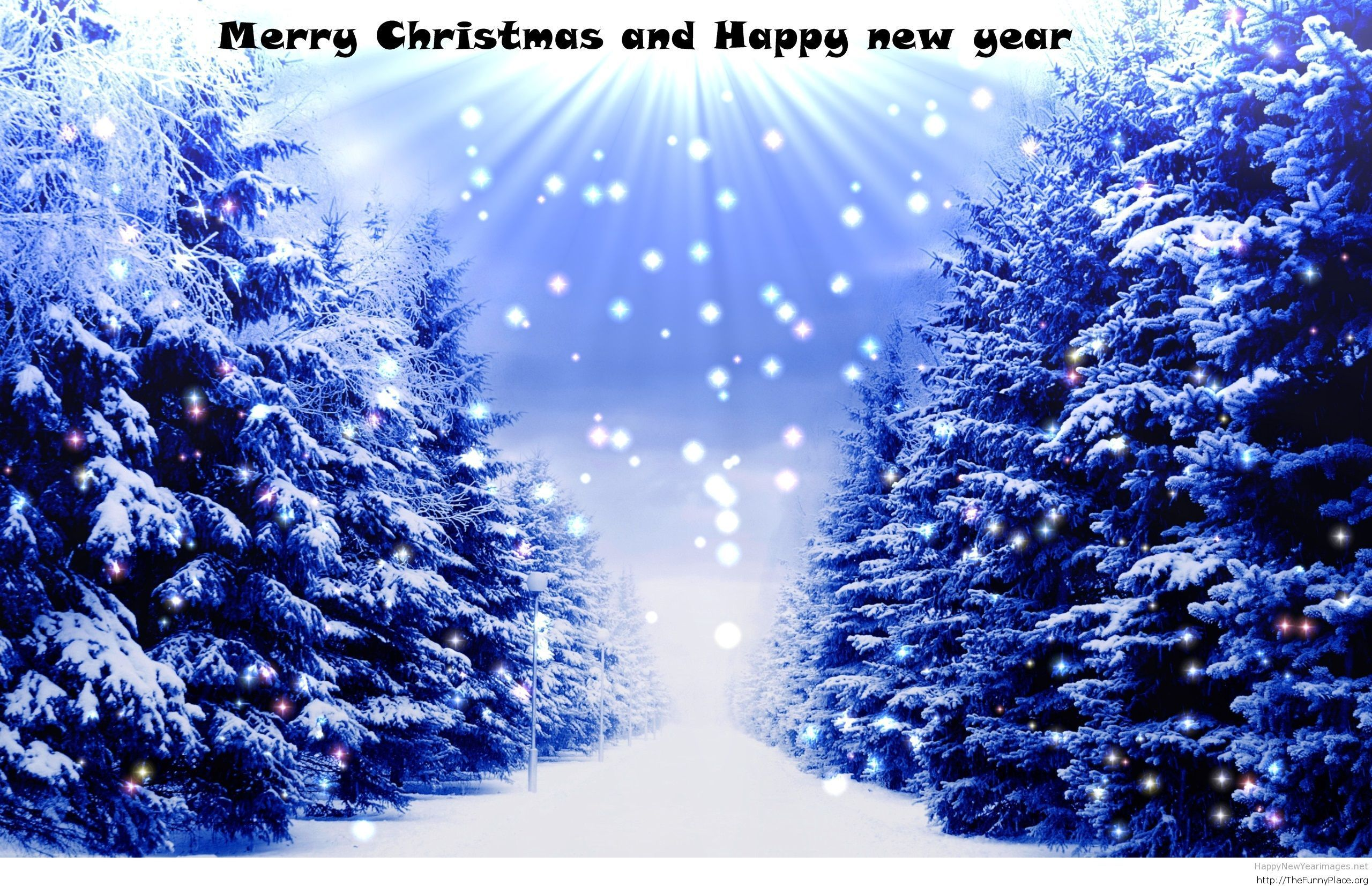 Merry Xmas & Happy New Year beautiful forest