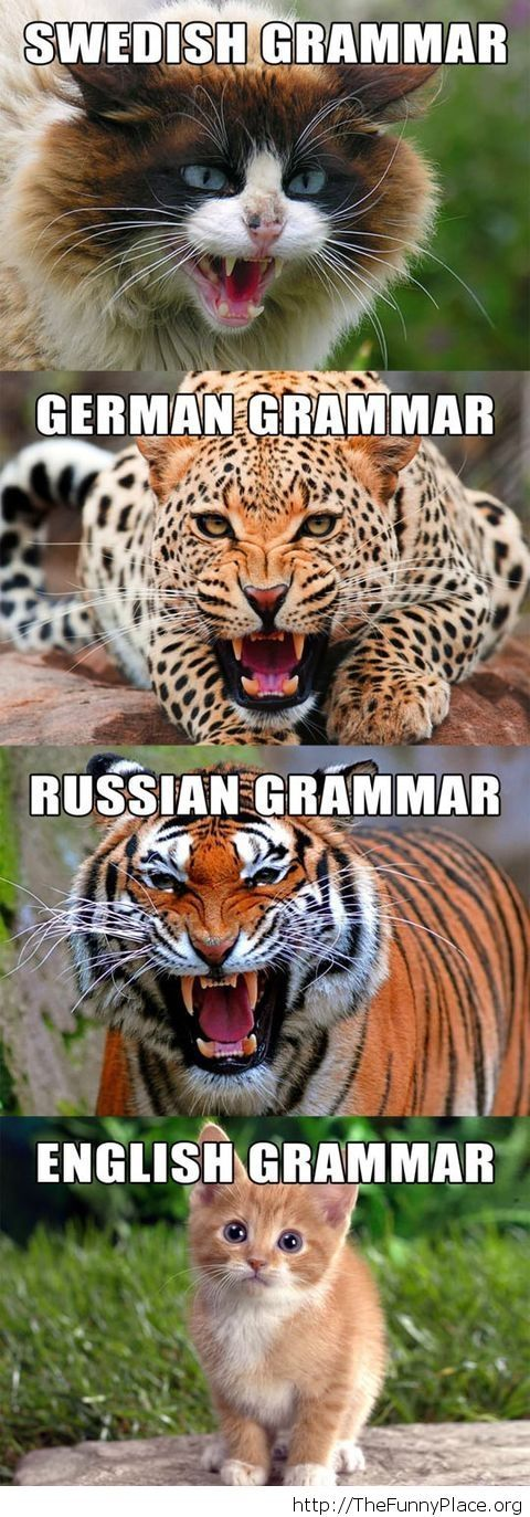 Types of grammar picture