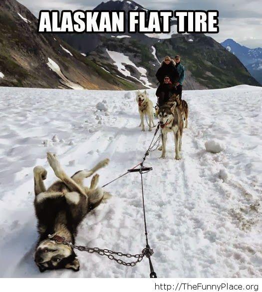 Flat tire joke